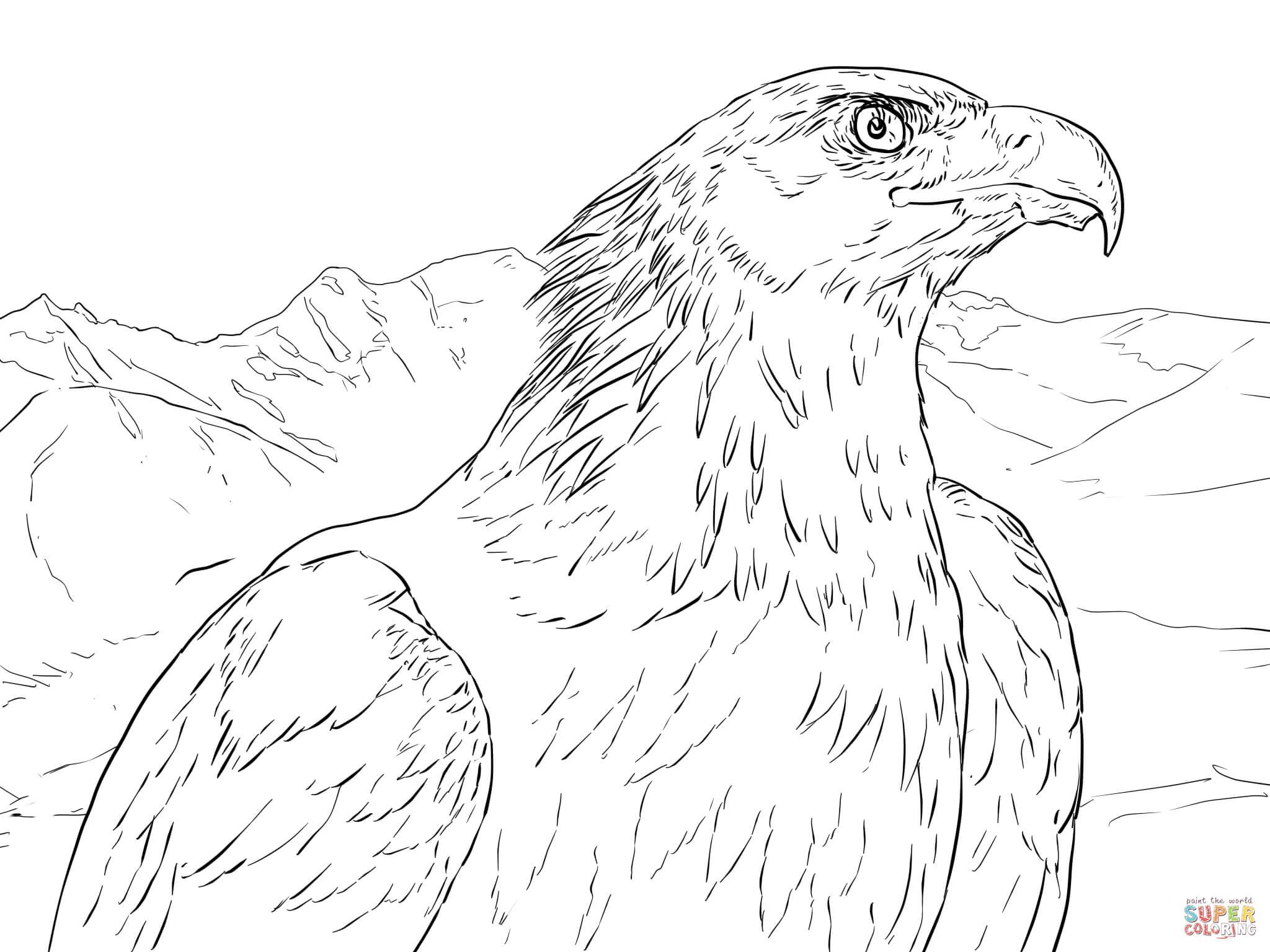 Dibujo de Retrato de un Águila Real para colorear