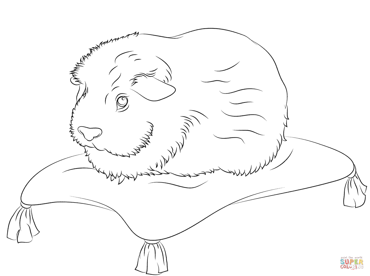Cute Guinea Pig Sits On A Pillow Coloring Page