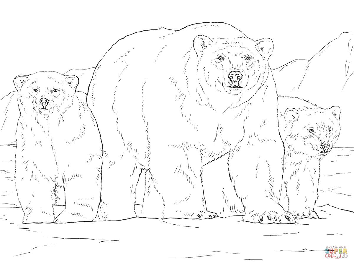 Disegno Di Orso Polare Con Due Cuccioli Da Colorare
