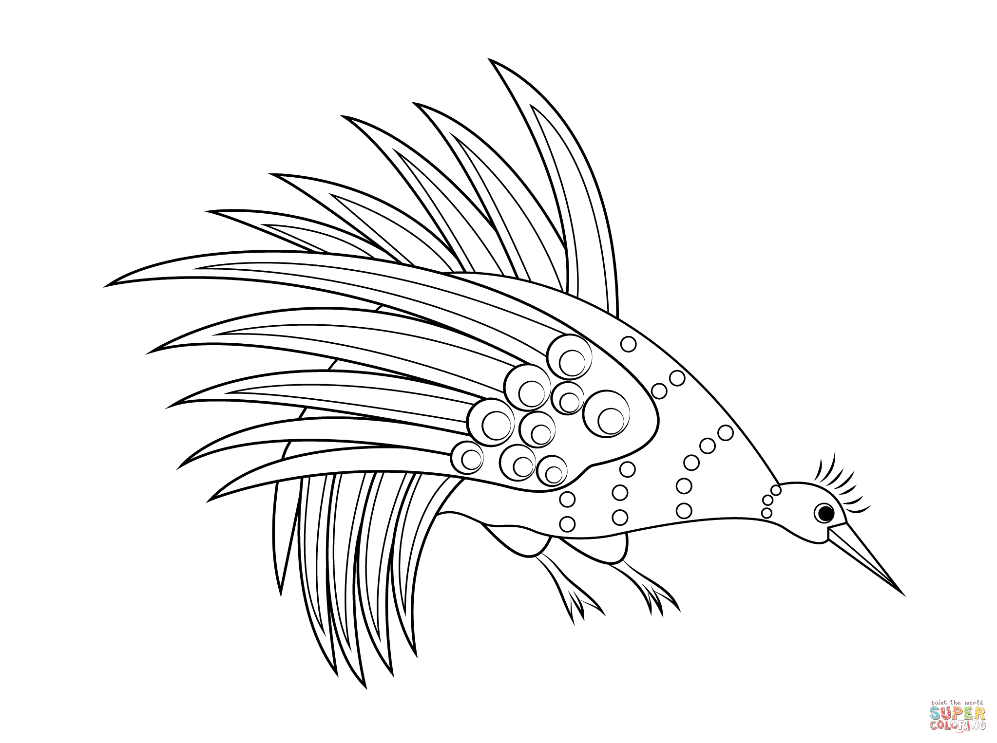 Rainbow Bowerbird Aboriginal Art Coloring Page