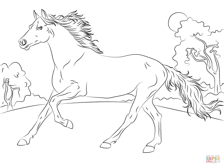 horse coloring sheet - Cypru.hamsaa.co