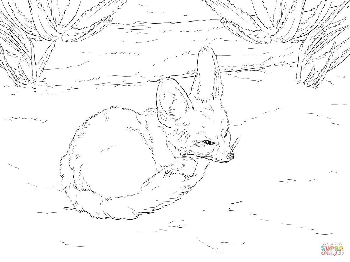 A Bunny Harness