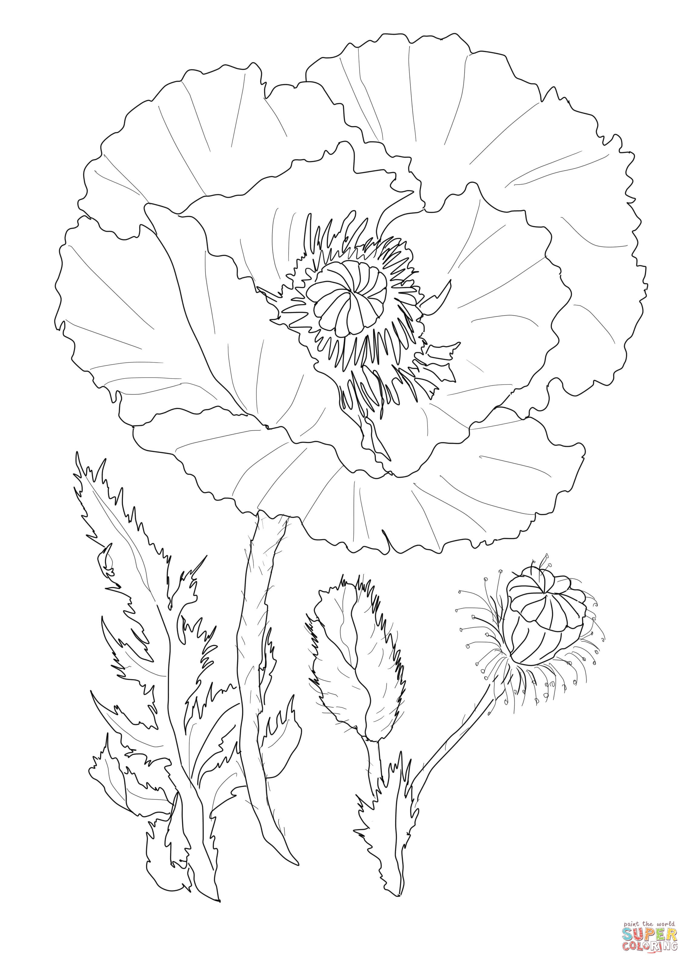 1000+ images about line art on Pinterest