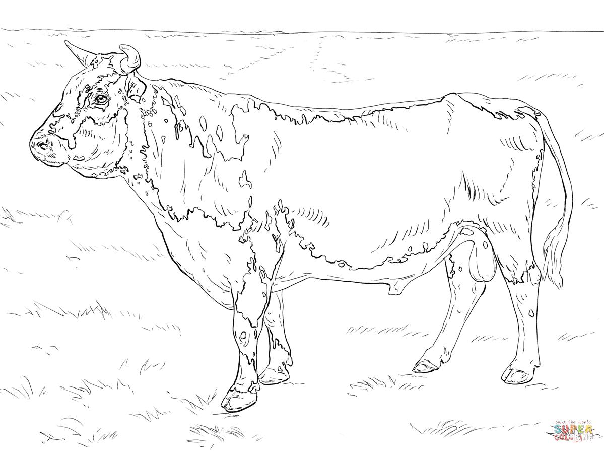 Randall Bull Coloring Page