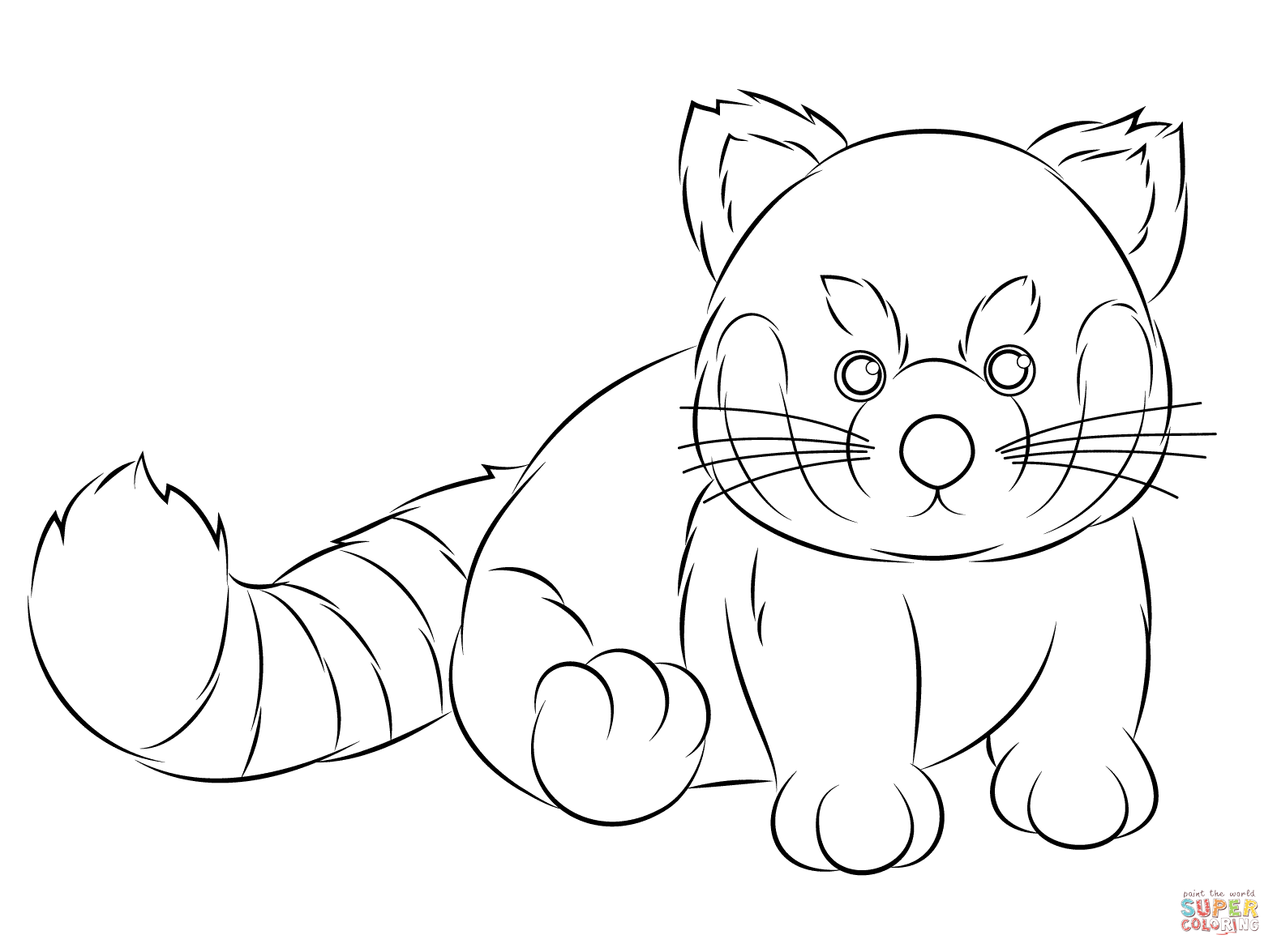 red dot pilot cat