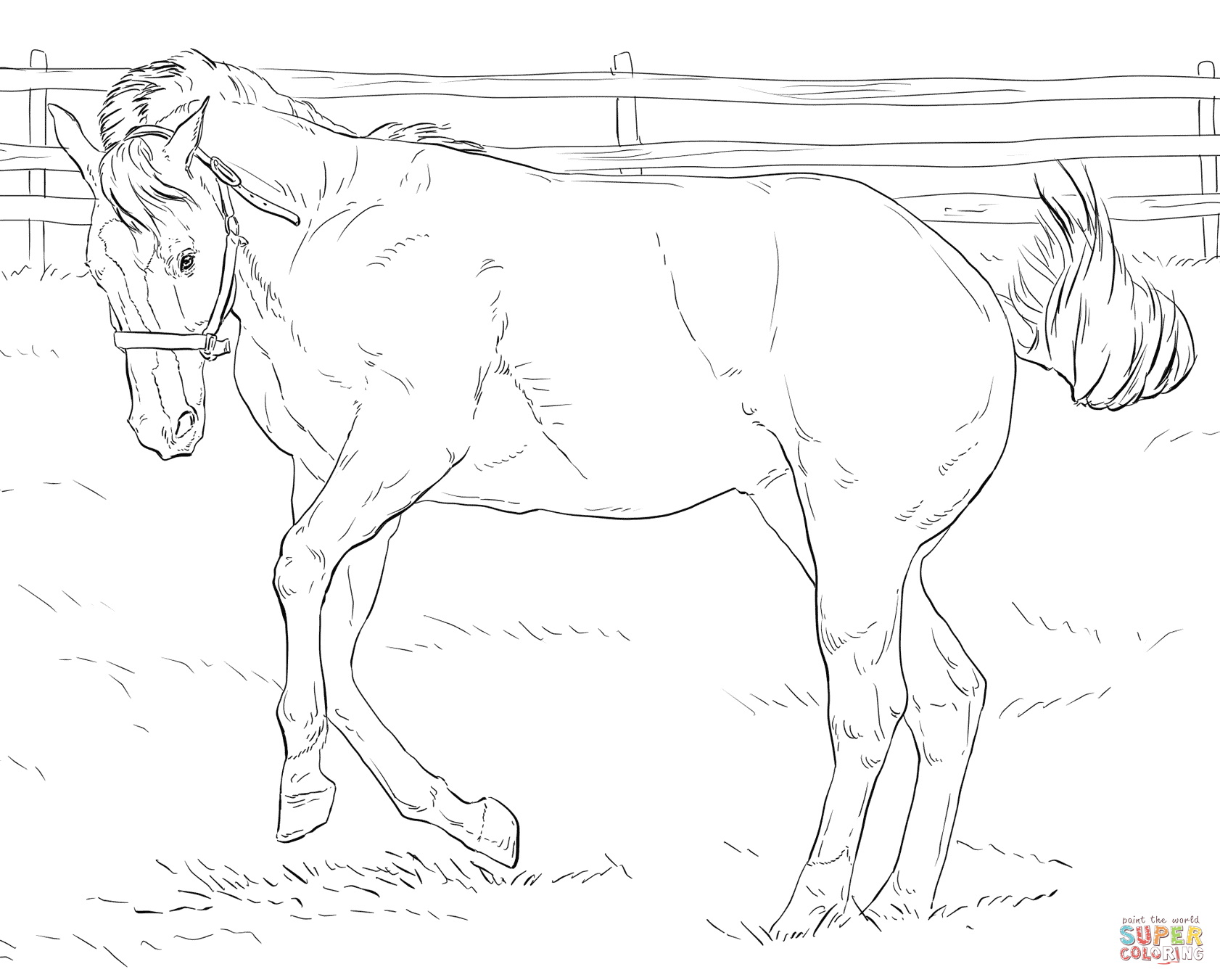 Click The Bucking Horse Coloring Pages To View Printable Free