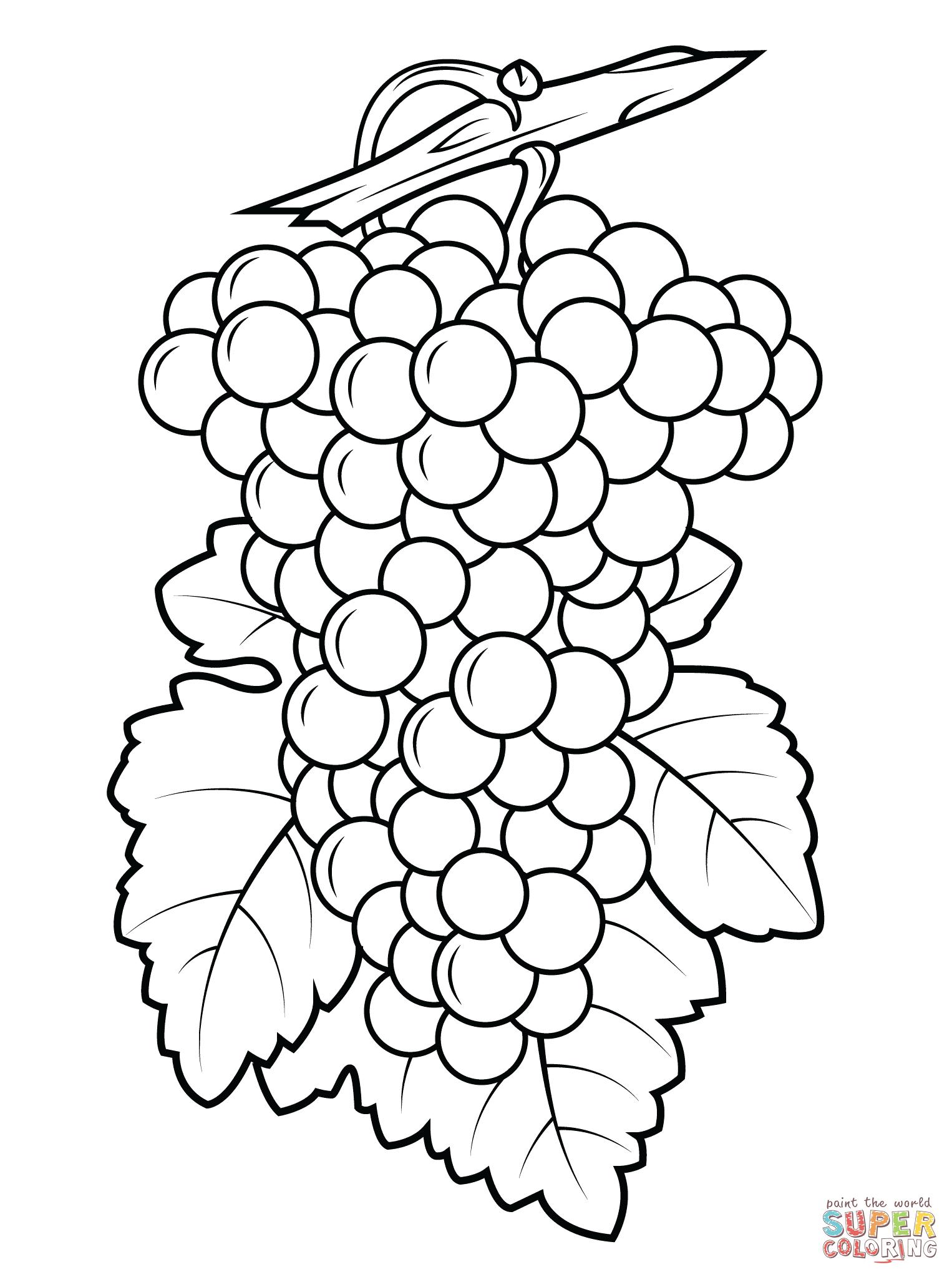 Uvas Para Colorear E Imprimir