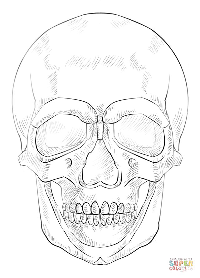 Human Skull Open Mouth Coloring Coloring Pages