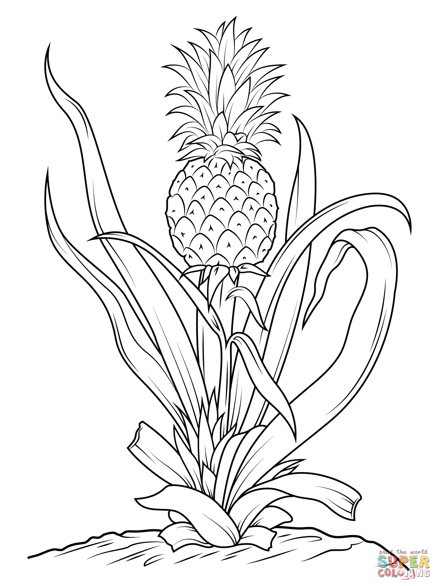 Pineapple Tree Coloring Page