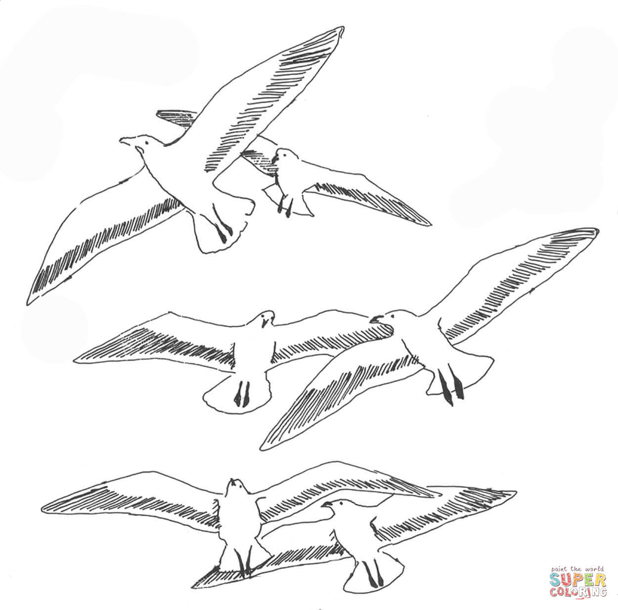 Seaguls Coloring Page