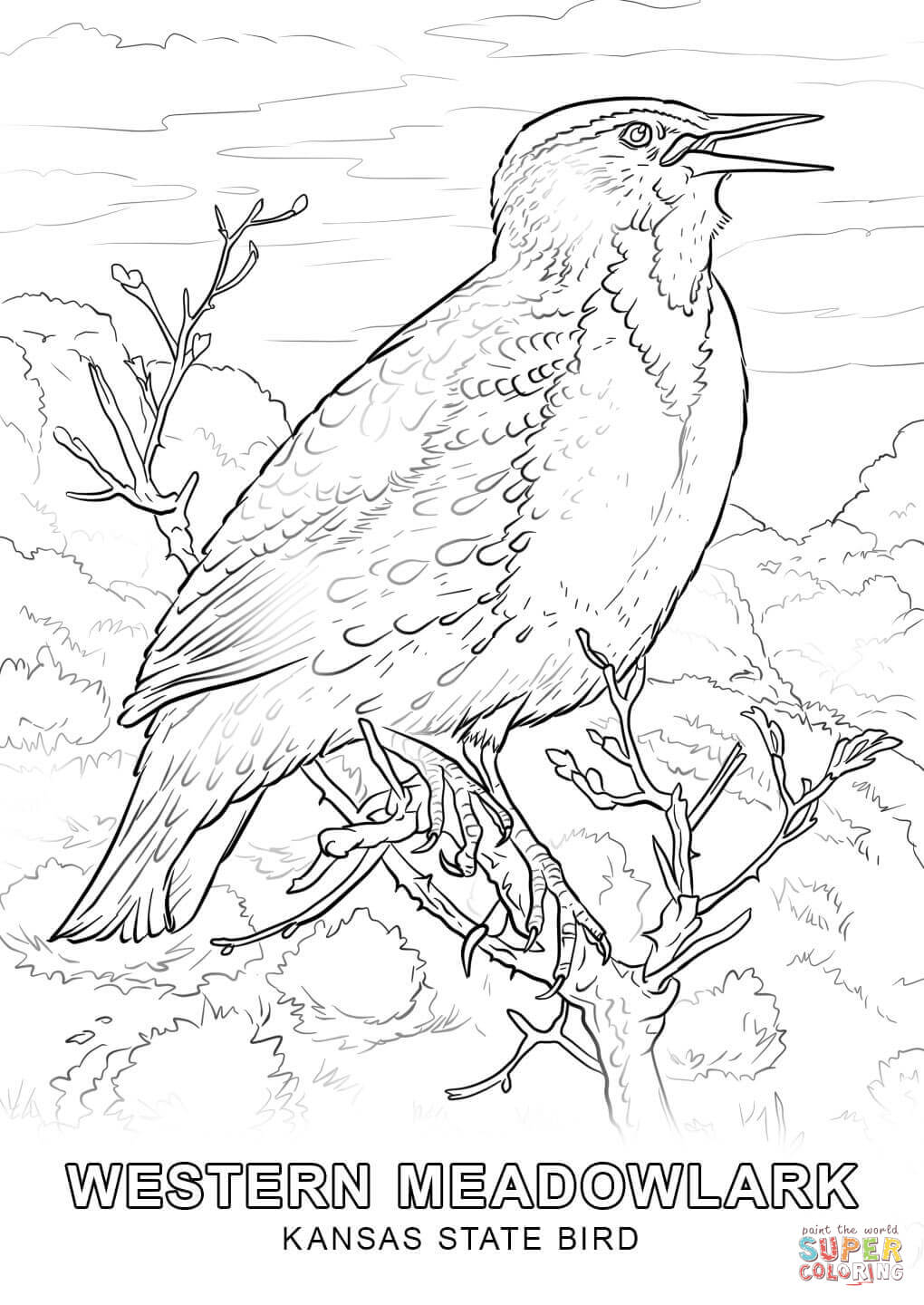 Grouse Animal Coloring Pages To See Printable Version Of