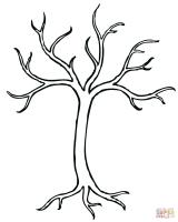 Ausmalbild Kahler Baum   Ausmalbilder kostenlos zum ...