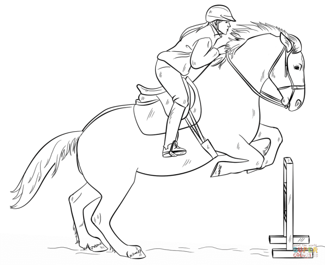 Jumping Horse with Rider coloring page  Free Printable Coloring Pages