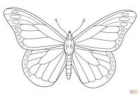 Monarch Butterfly coloring page | Free Printable Coloring ...