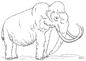 Disegno di Mammut lanoso da colorare   Disegni da colorare ...