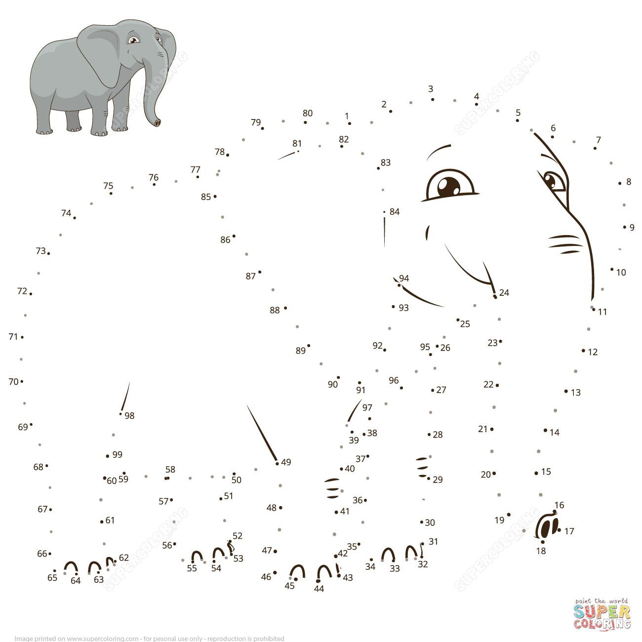 Elephant Mammals Worksheet
