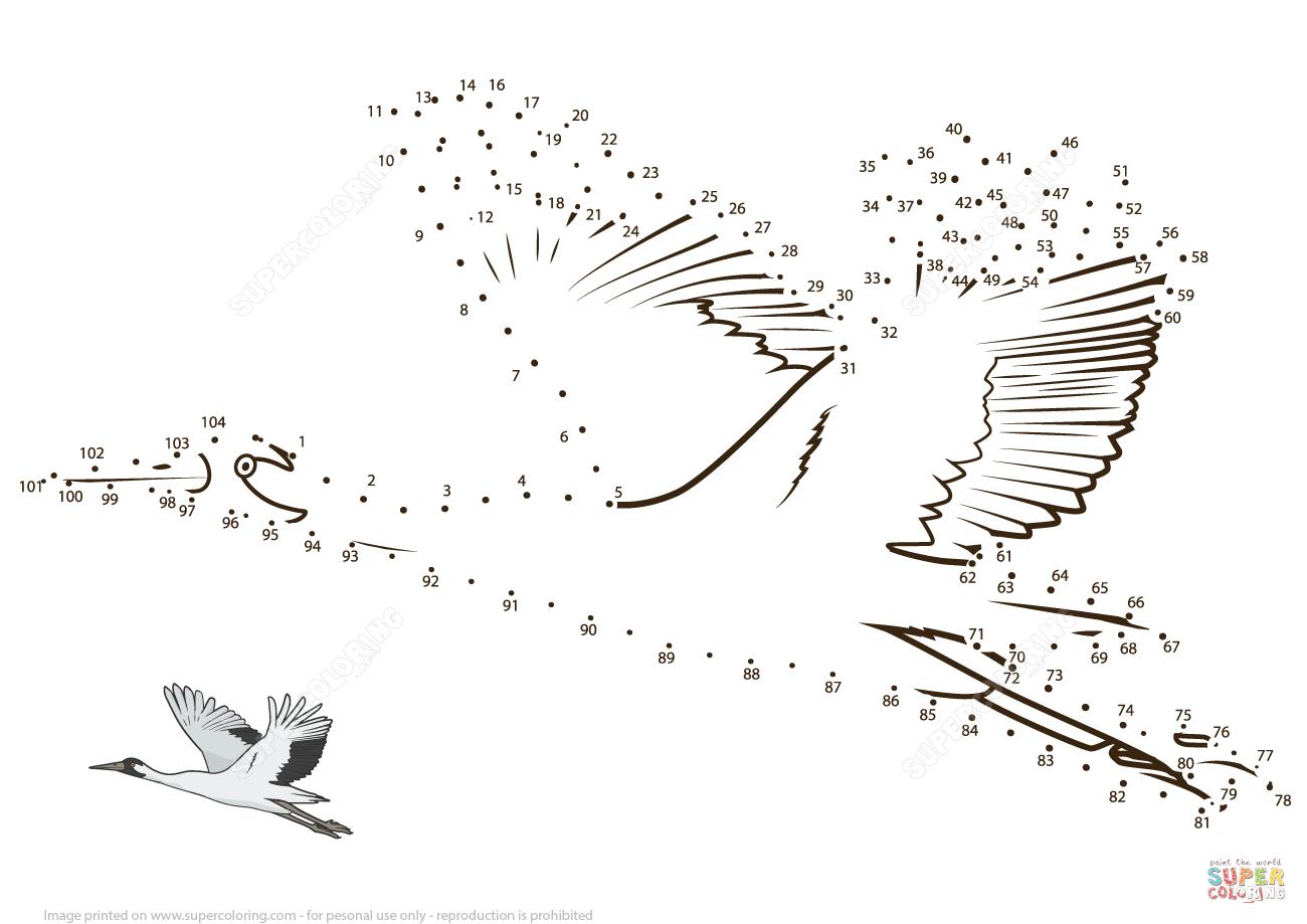 Flying Crane Dot To Dot
