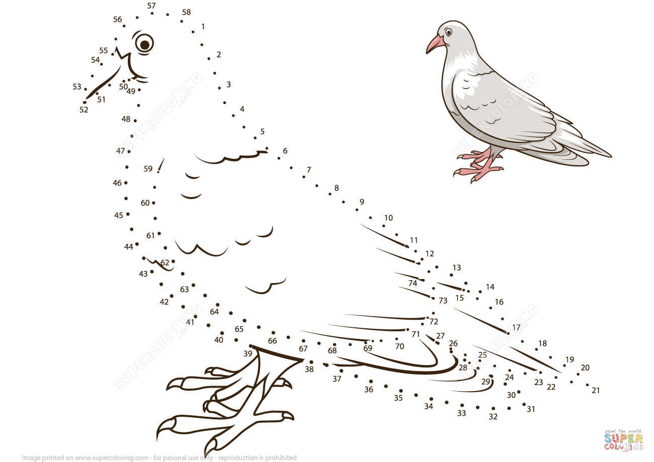 Bird Dot To Dot Worksheets