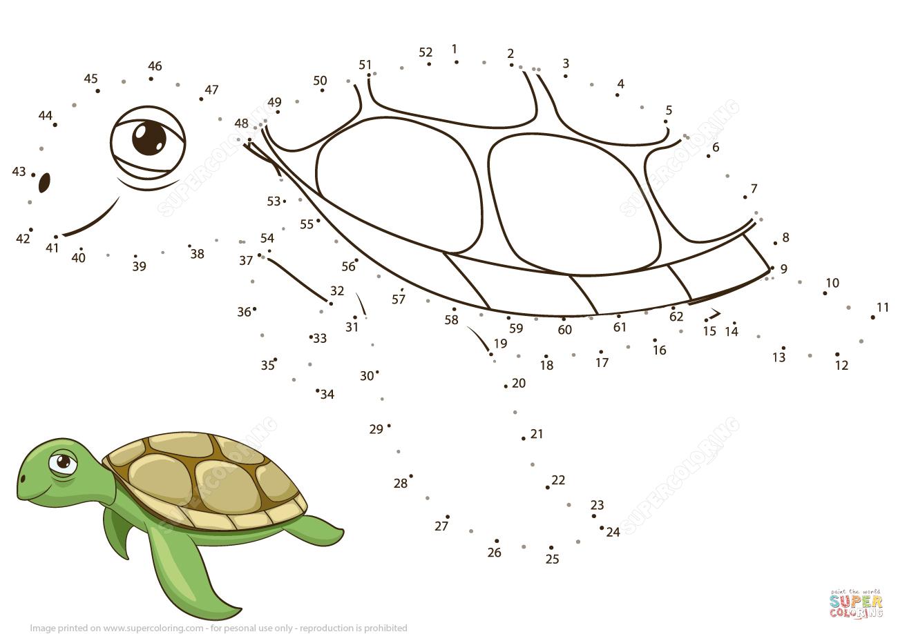 Sea Turtle Dot To Dot