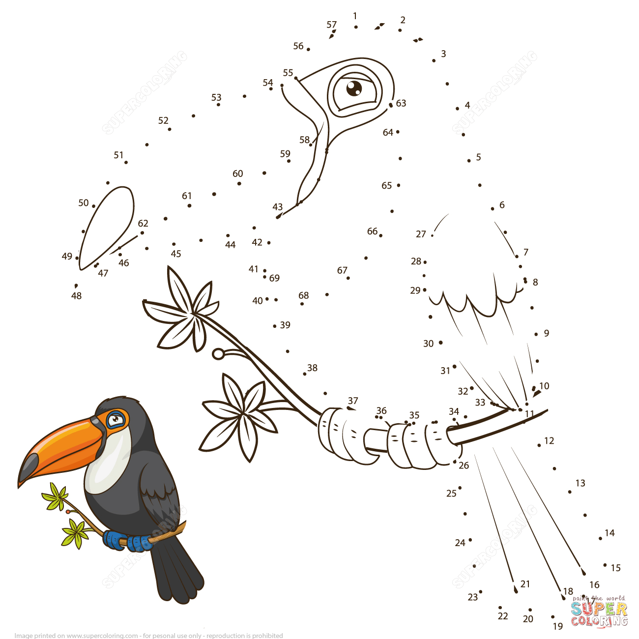 Toucan Dot To Dot