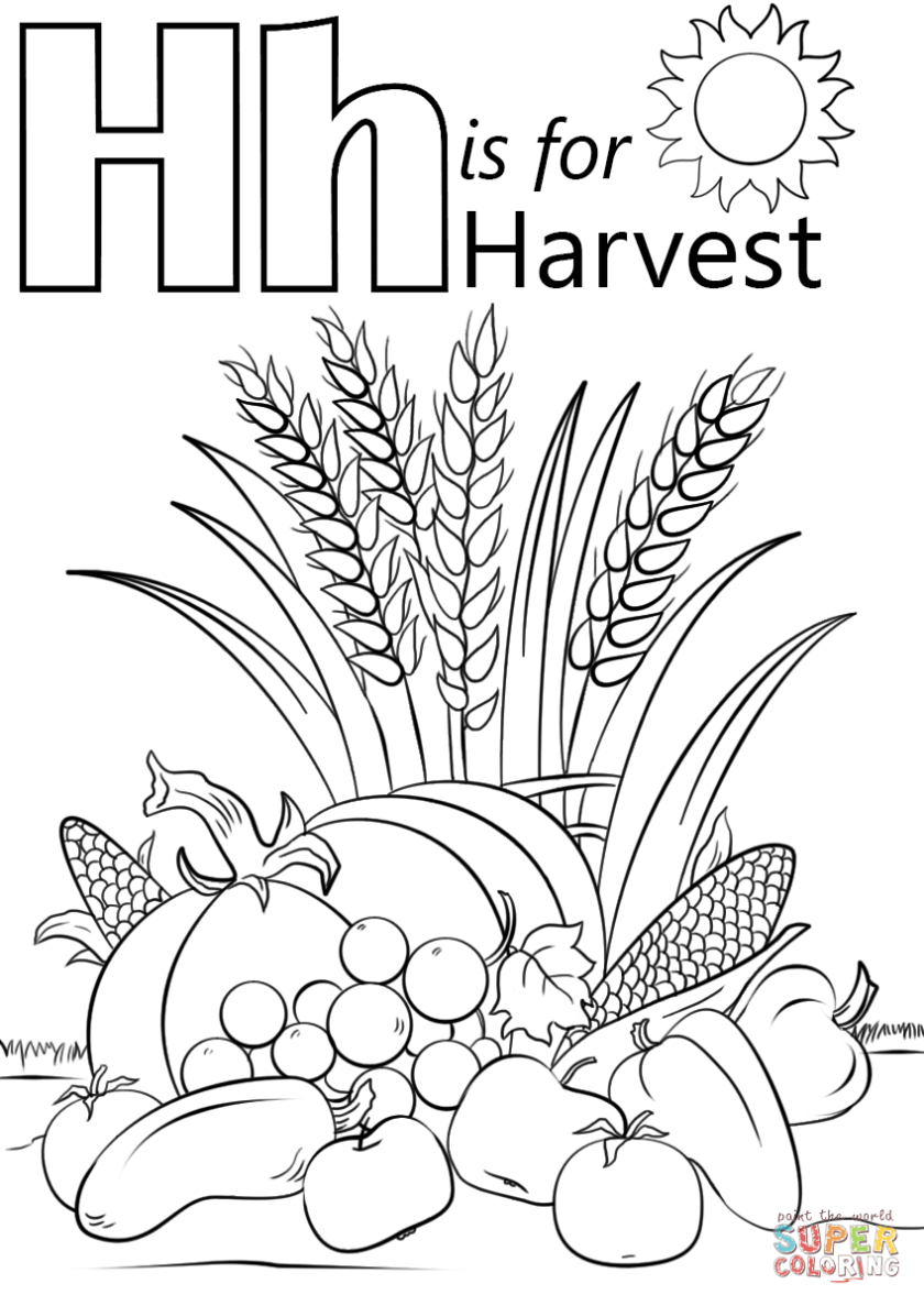 letter h is for harvest coloring page  free printable