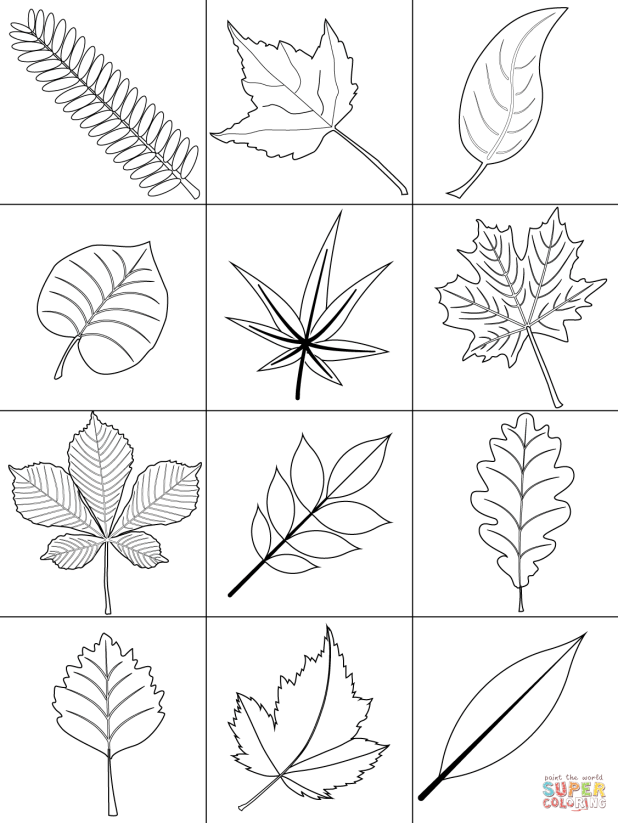 Coloring Images Of Autumn Leaves