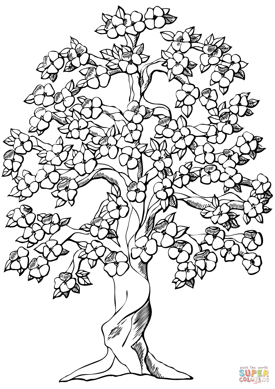 Flowering Apple Tree Coloring Page