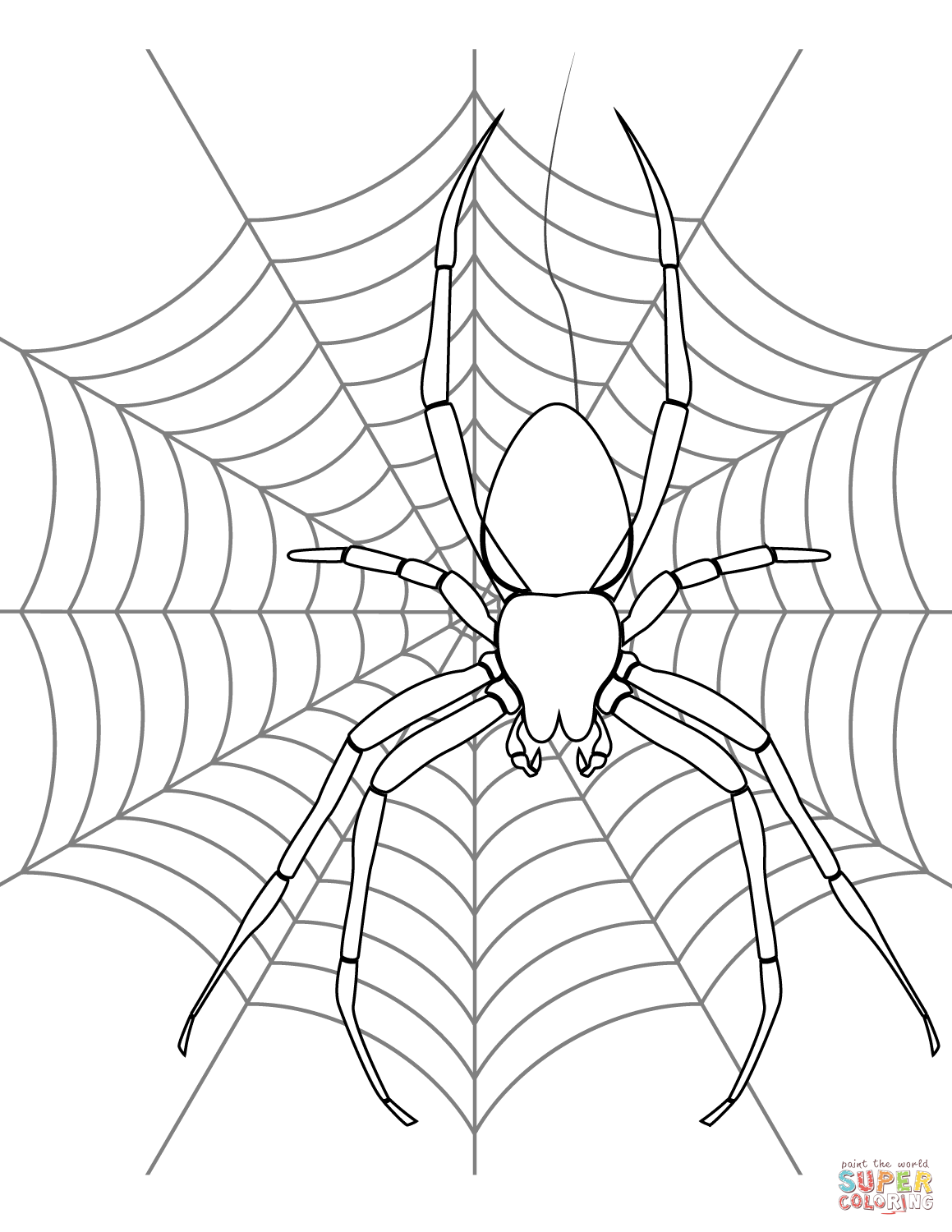 Spider On Its Web Coloring Page Free Printable Coloring Pages
