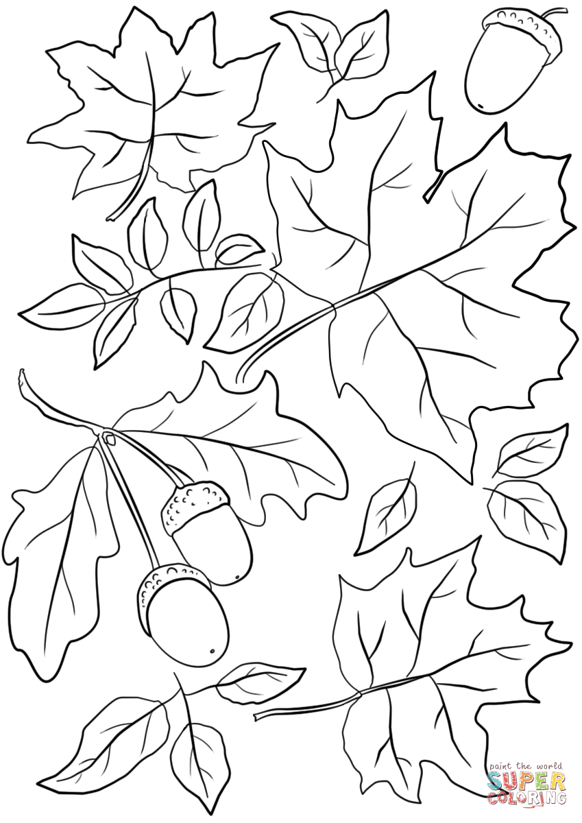 Autumn Leaves And Acorns Coloring Page Free Printable Coloring Pages