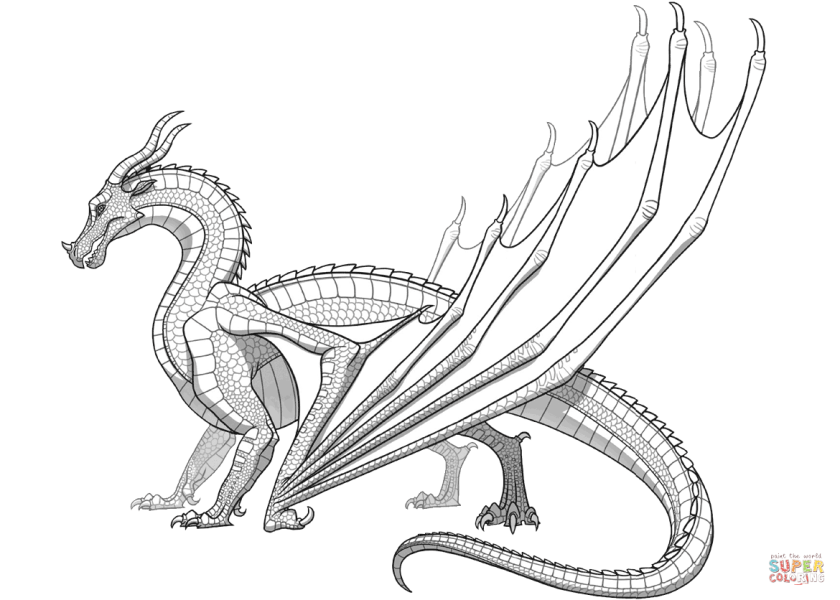 skywing dragon from wings of fire coloring page  free