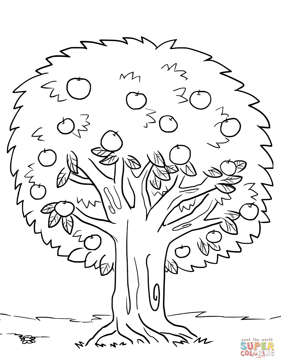 Trees Leaves Coloring Pages Free Coloring Pages