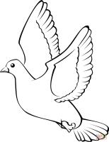 Malvorlage Weiße Taube