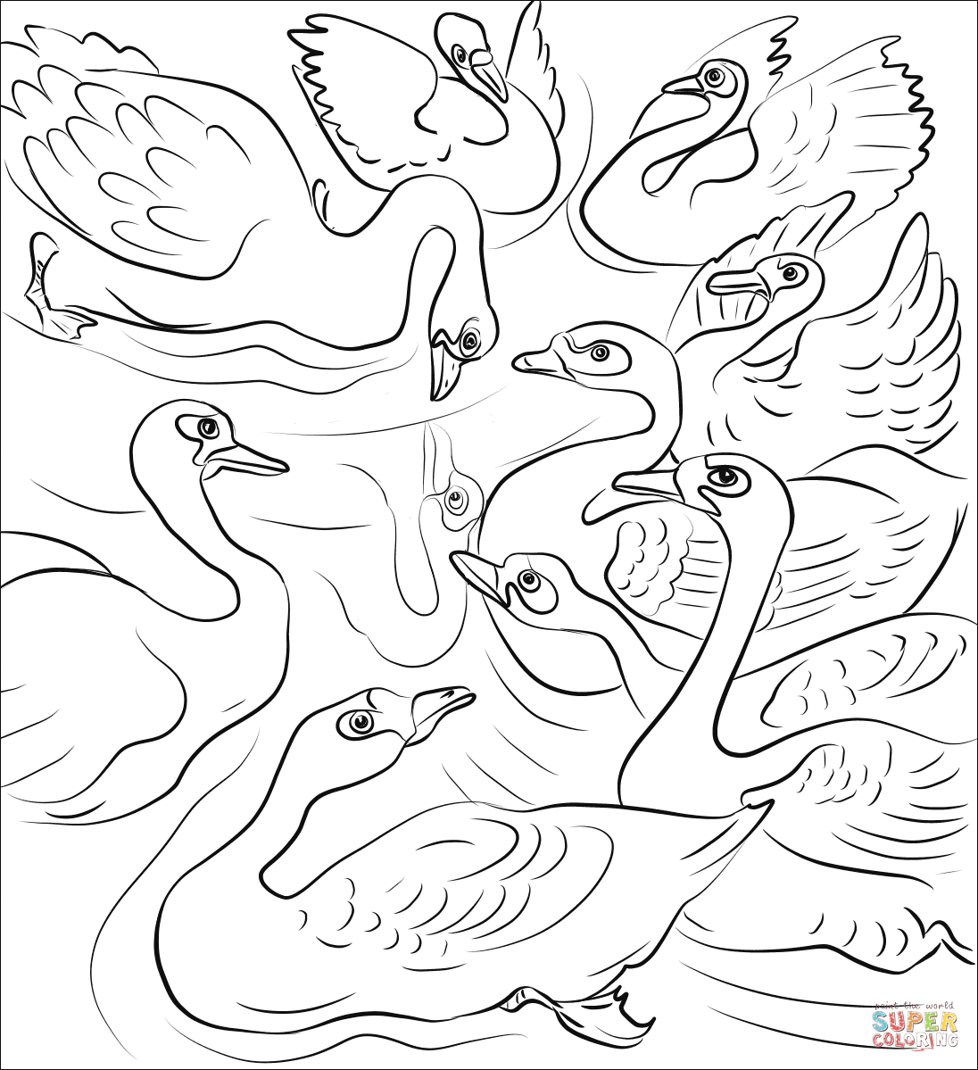 The Ugly Duckling Throw Himself at the Flock of Swans
