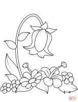 Ausmalbild Glockenblumen   Ausmalbilder kostenlos zum ...