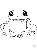 Toad Coloring Pages   Learny Kids
