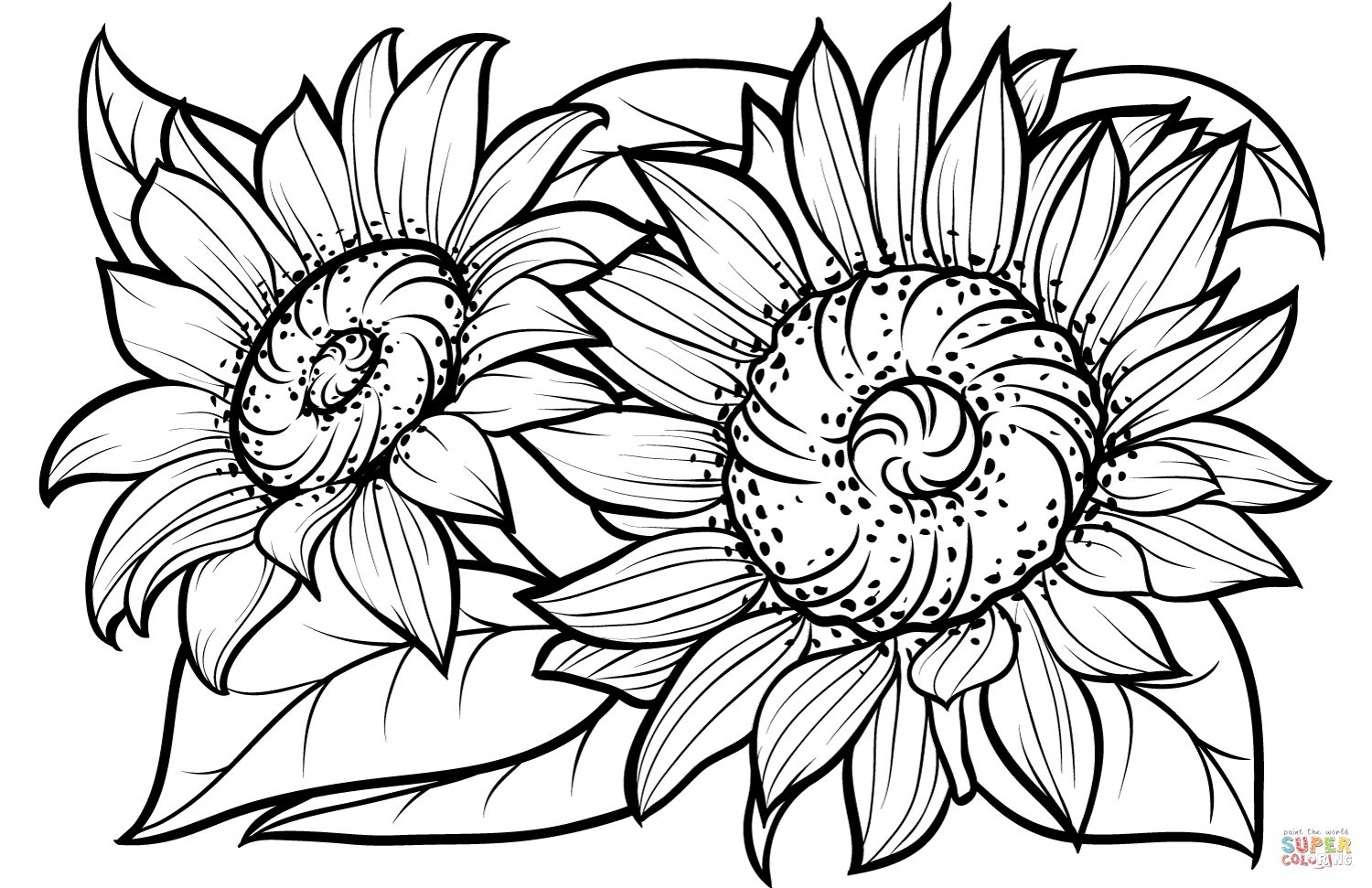 Sunflower Coloring Page Sketch Coloring Page