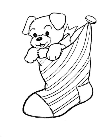 A Puppy Dog In A Christmas Stocking Coloring Page Free Printable Coloring Pages