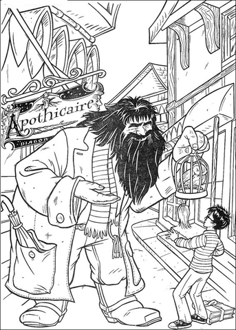 Harry Potter Ausmalbilder Zum Drucken
