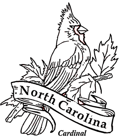 Dibujo de Cardenal, Ave de Carolina del Norte para