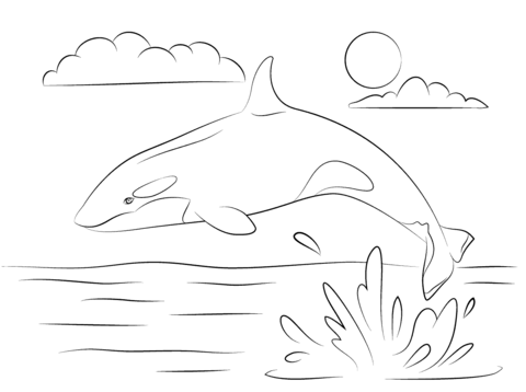 Cute Killer Whale is Jumping Out Of Water coloring page