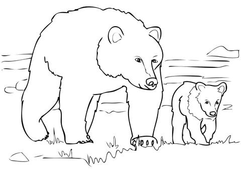 회색곰 가족 색칠하기