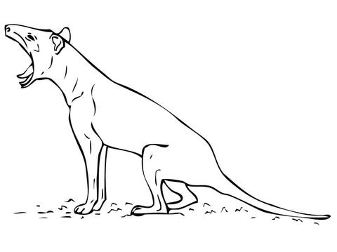 Dibujo de Tigre de Tasmania sin rayas para colorear