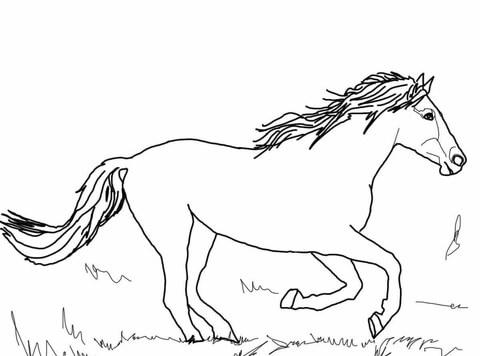 Dibujo de Caballo Mustang Corriendo para colorear
