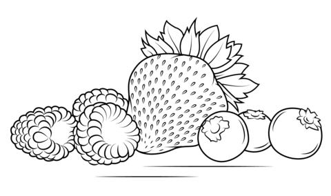 Ausmalbild Erdbeeren Himbeeren Und Blaubeeren