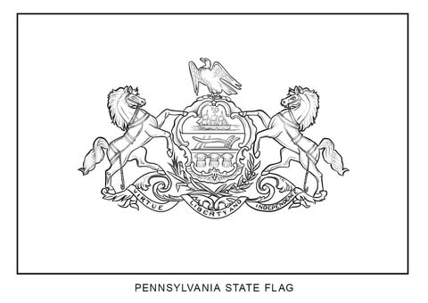 Pennsylvania State Symbols Pennsylvania Ducks Wiring