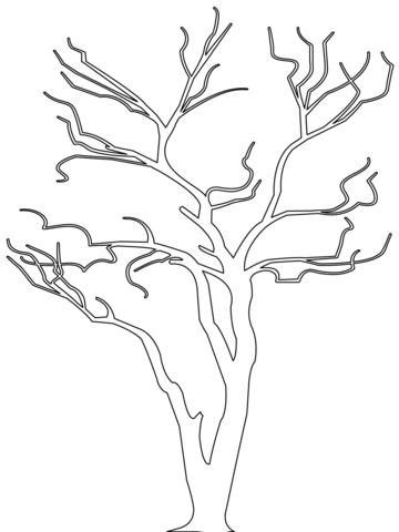 Ausmalbild Kahler Baum Silouette Ausmalbilder kostenlos