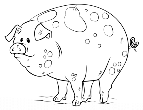 Pig Coloring Pages Free Coloring Pages