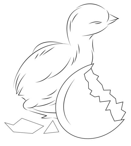 Dibujo de Pollito Saliendo del Cascarón para colorear