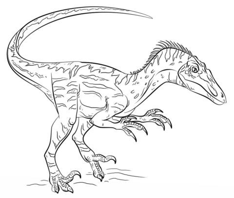Jurassic World Kleurplaat