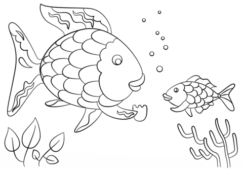 Rainbow Fish Gives a Precious Scale to Small Fish coloring
